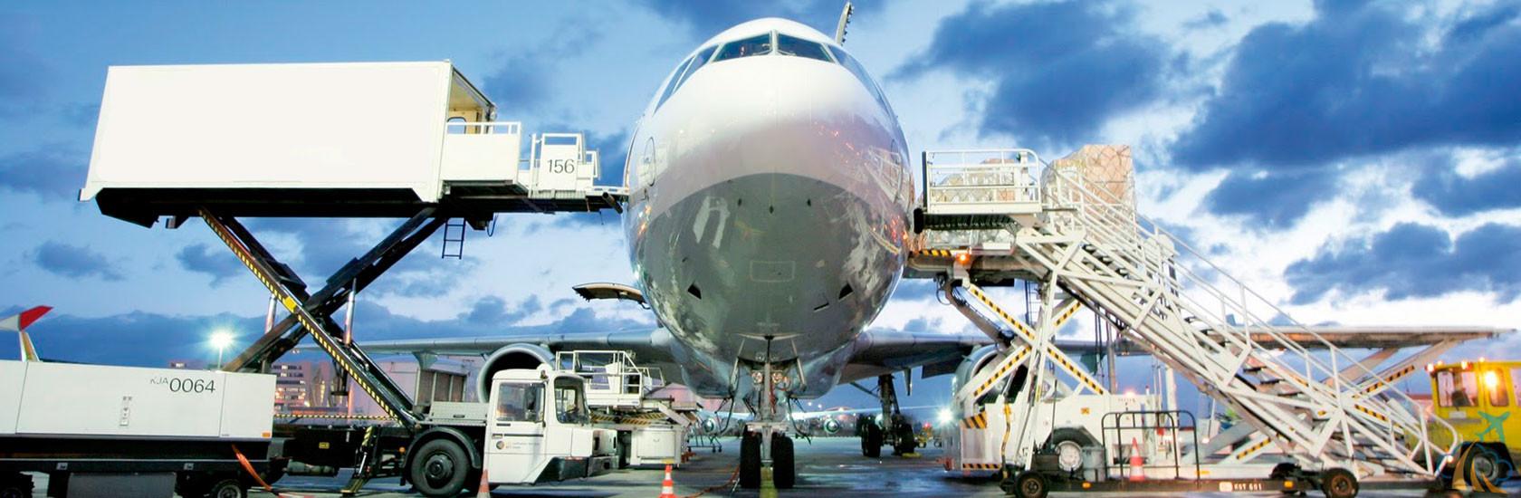 доставка грузов авиатранспортом от компании AVIAV TM (Cofrance SARL). Как осуществляется перевозка животных, как ее заказать и оформить необходимые документы. Помощь специалистов «Кофранс САРЛ» по всем вопросам.